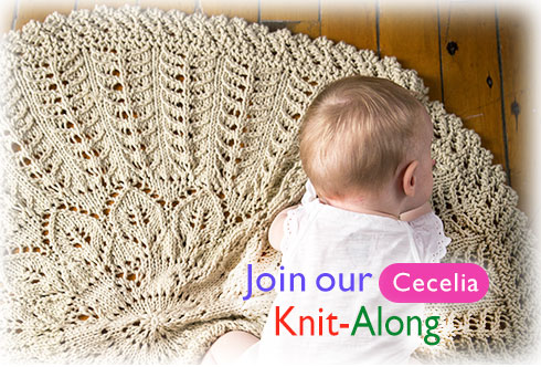 Join our Cecelia Knit-Along